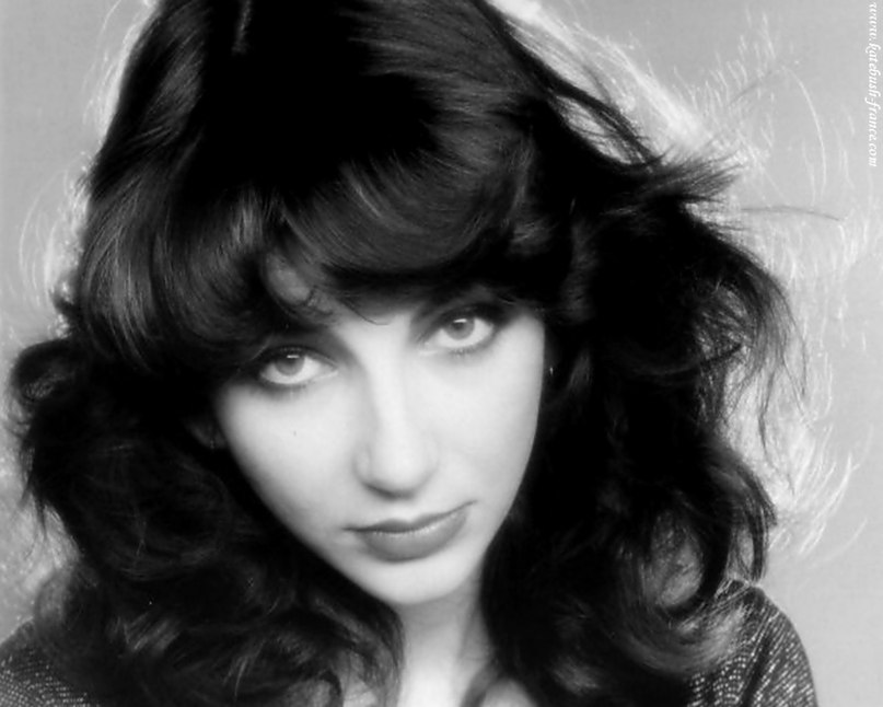 Night of the Swallow Kate Bush